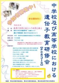 2013_poster.pdf